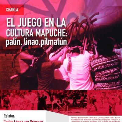 juego cultura mapuche