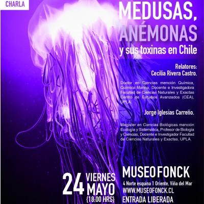 charla medusas